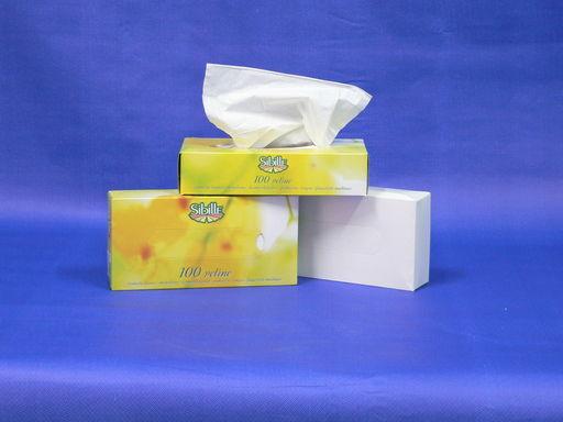 Kozmetikai kendő tissue, fehér, 2 rétegű, 100 db/doboz,40 doboz/karton - 1024x768 pixel - 204683 byte
